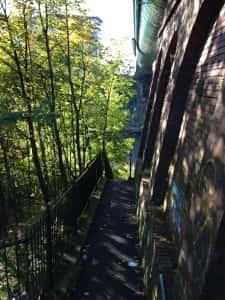 12a Bridge steps