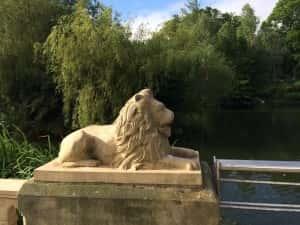 2j Lion