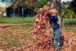 autumn playing children outdoors