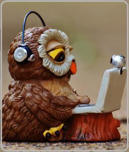 Image: Owl wearing headphones