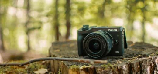 camera in forest