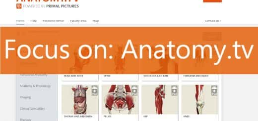 anatomy.tv heading