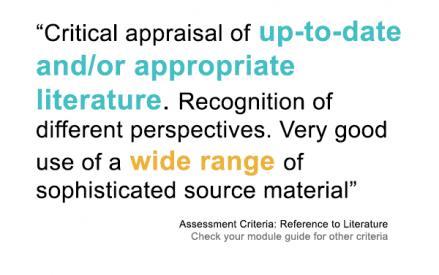 Literature assessment criteria
